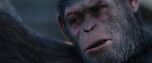 WarForPlanetOfApes-10